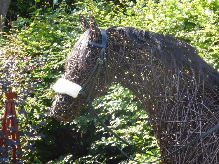 Racehorse (1)