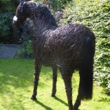 Racehorse (8)