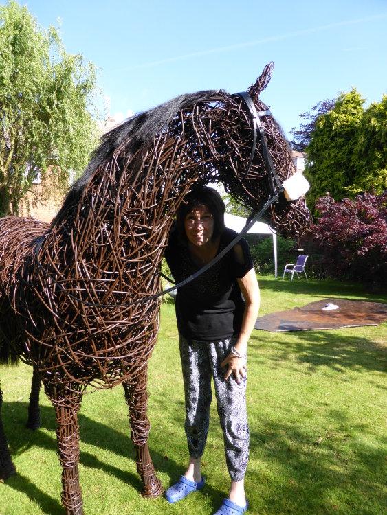 Racehorse (7)