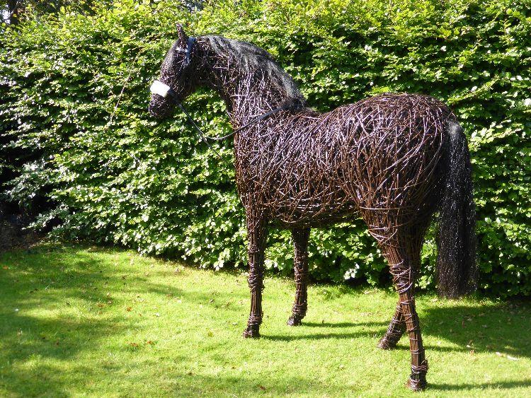 Racehorse (4)