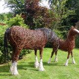 Shire & Foal (3)