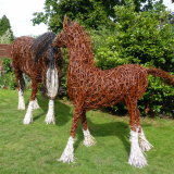 Shire & Foal (1)