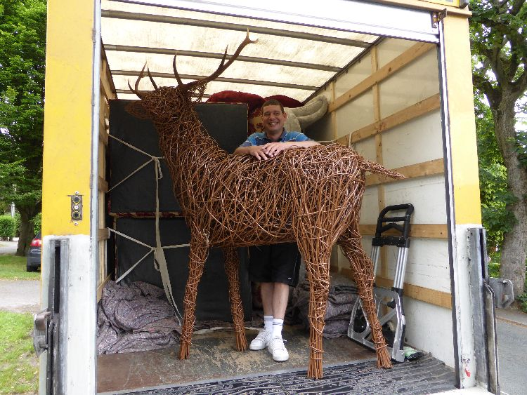 Stag on it's way to ? Essex? Kent? France?