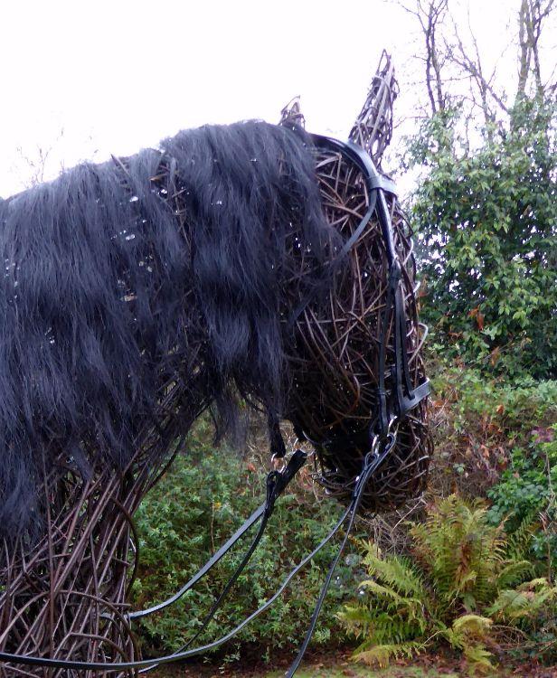 War Horse (5)