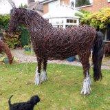 War Horse (9)