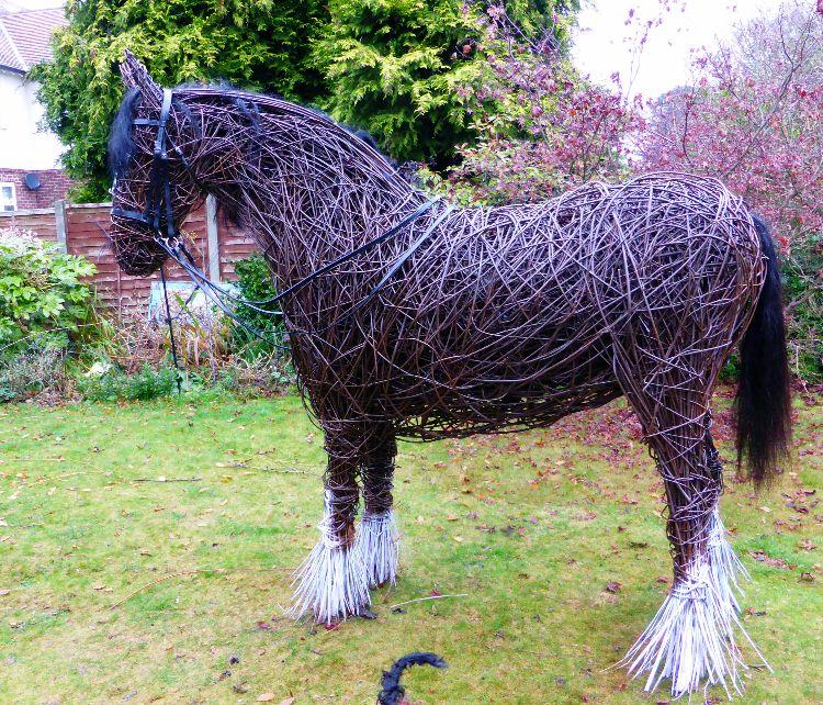 War Horse (3)