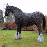 War Horse (4)