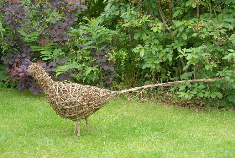 pheasant (1)