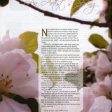 Published in March-April 2010 Publication of Welsh Country Magazine