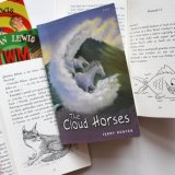 Published Cover and Black & White Illustrations- Children's Fiction, Gomer Press & Pont Books