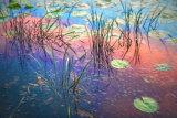 Wetlands Sunrise