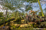 Wee Reekie with New Reekie, Royal Botanic Garden Edinburgh