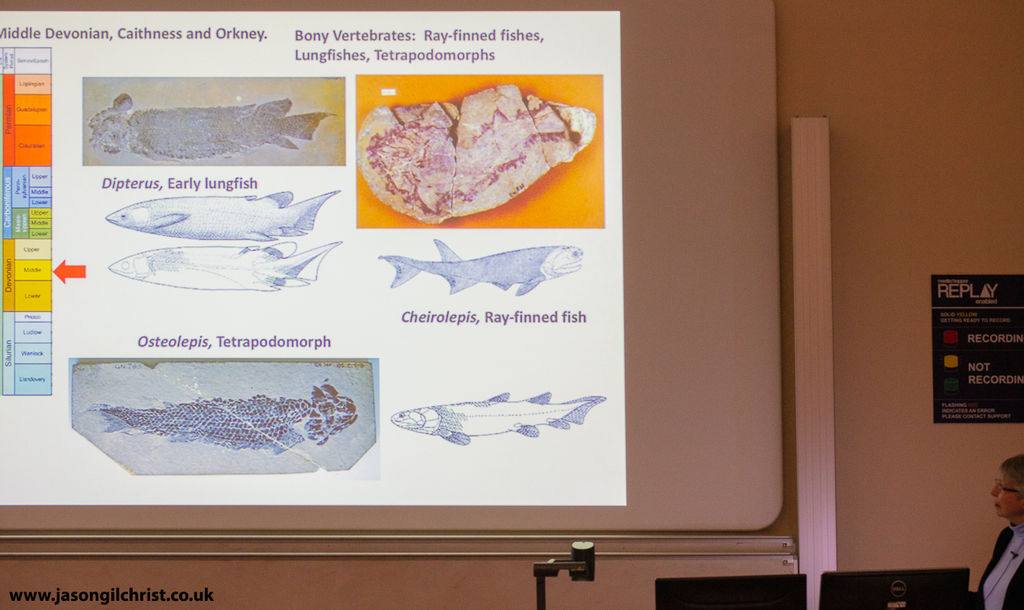 Professor Jenny Clack presenting to the Edinburgh Geological Society