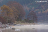 Morning mist over Loch Sunart