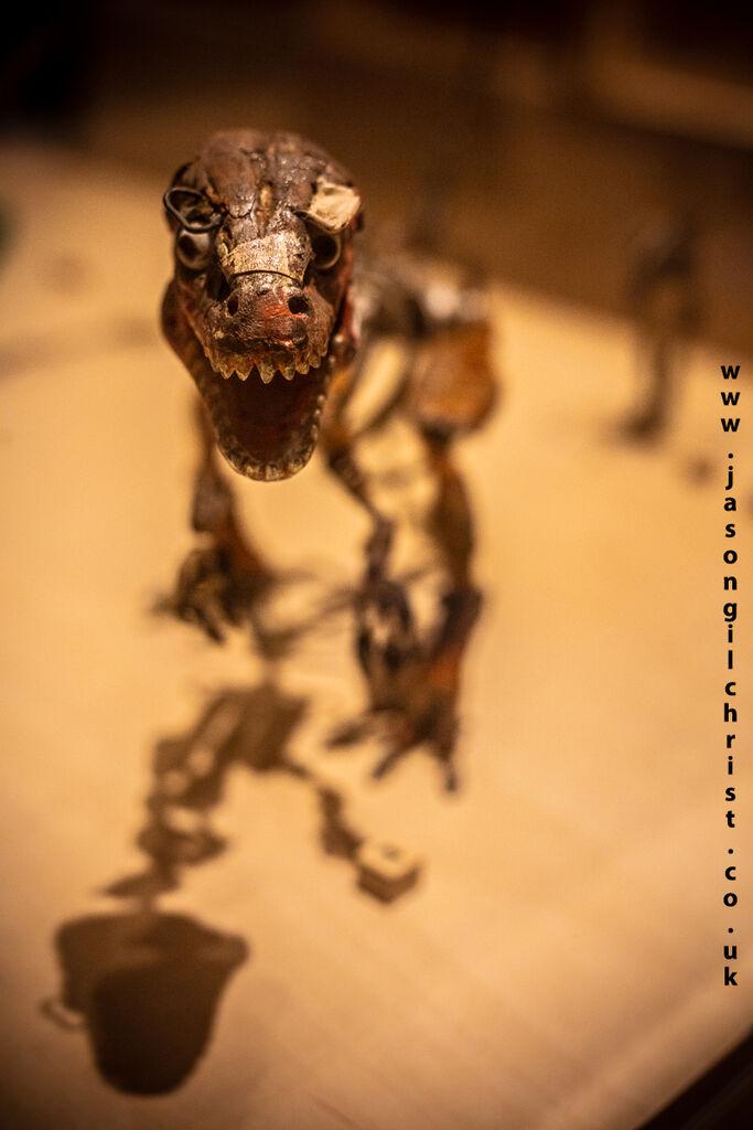 Ray Harryhausen: Titan Of Cinema, Tyrannosaurus rex dinosaur model armature
