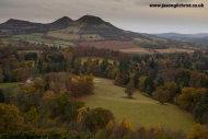 Scott's View in Autumn