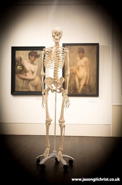 Skeleton, Ages of Wonder, at Dunoon Burgh Hall