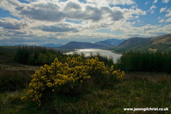 Spring in the Highlands