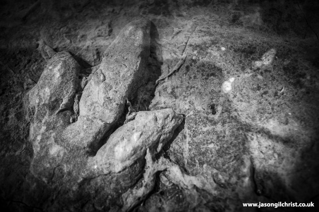 Theropod dinosaur footprint from Isle of Skye, at Kelvin Hall, Glasgow