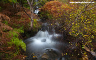 Magical waterfall and autumn leaves on Ben Lee