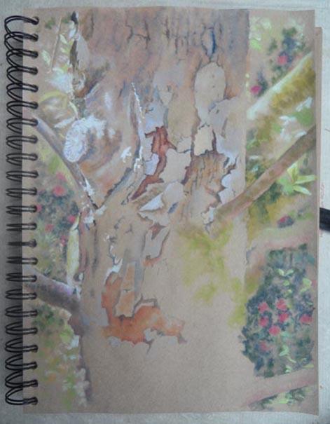 Brantwood, in the garden