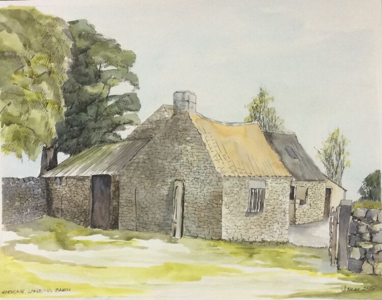 Hardgate Lambing barn. Watercolour and ink
