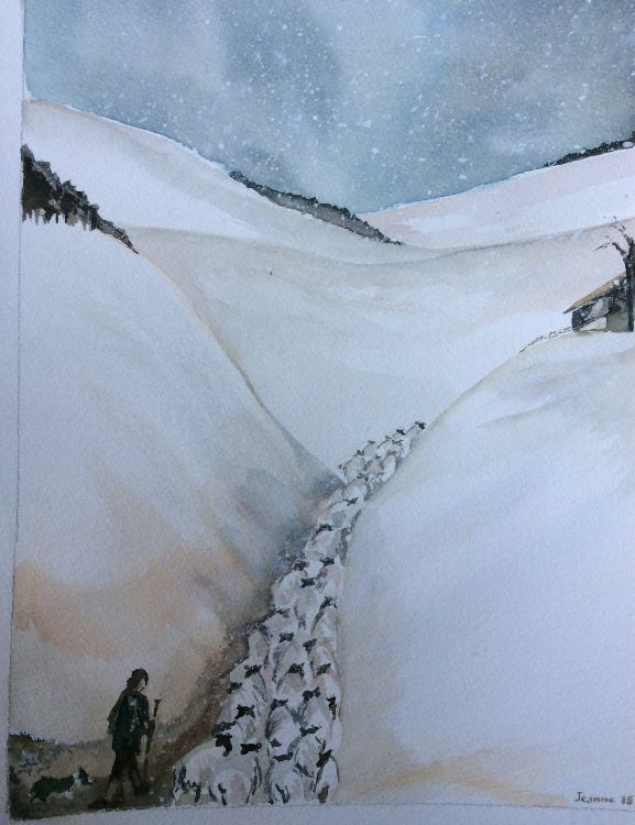Sheep going through cutting Original sold but prints available