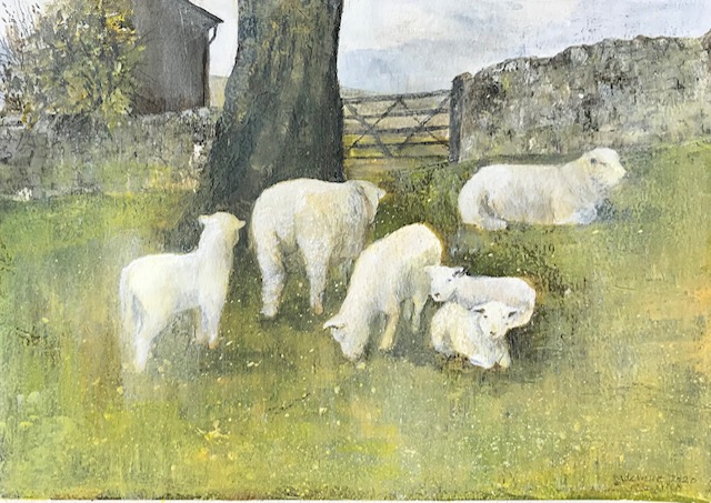 Spring in the paddock -  Ryeland sheep with lambs