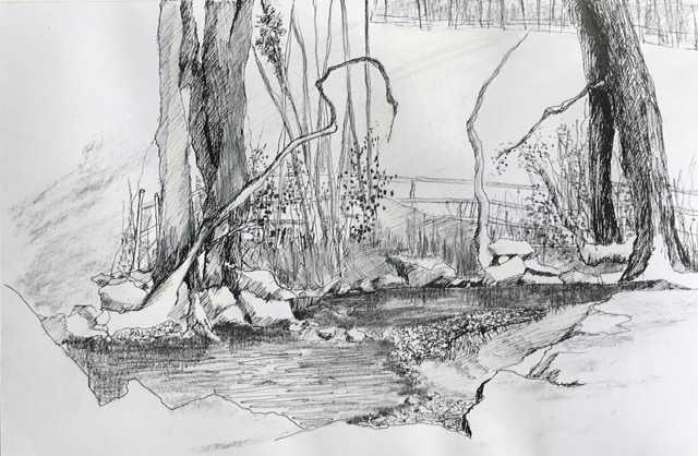 Stream in Nidderdale pen and charcoal