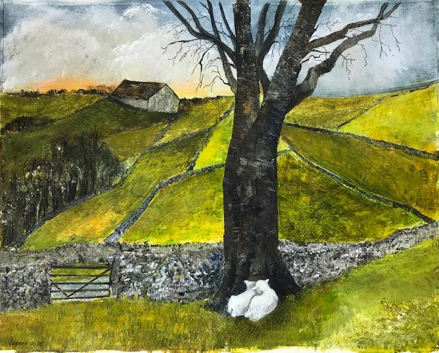 Young lambs at foot of tree