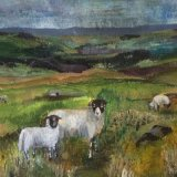 Ewe and lamb Swaledale