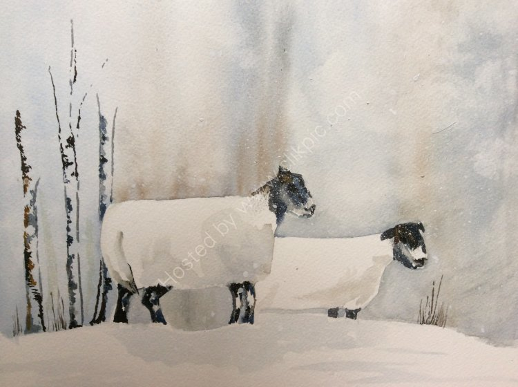Sheep in snow with sliver birches SOLD
