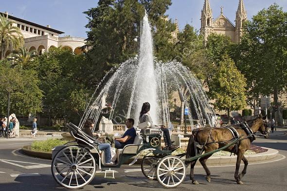 Horsedrawn tourist transport