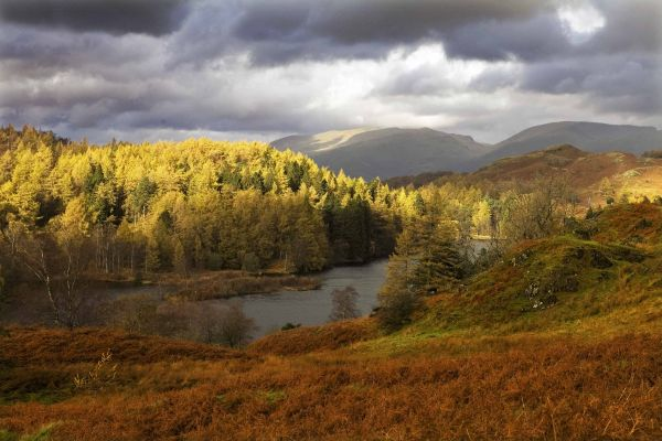 Tarn Hows, Lake District, in Autumn