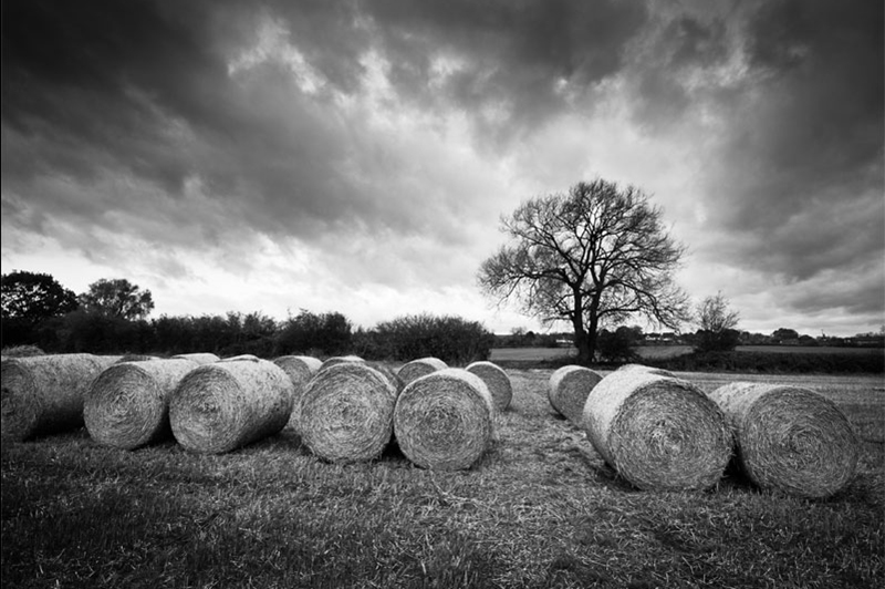 Hay Bales, Herefordshire