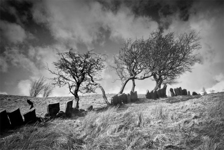 Wycollar Stone Hedge Mar 08