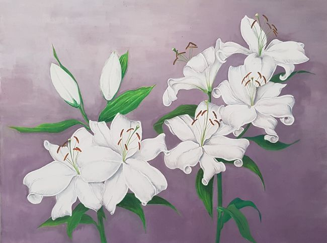 Lillies in bloom