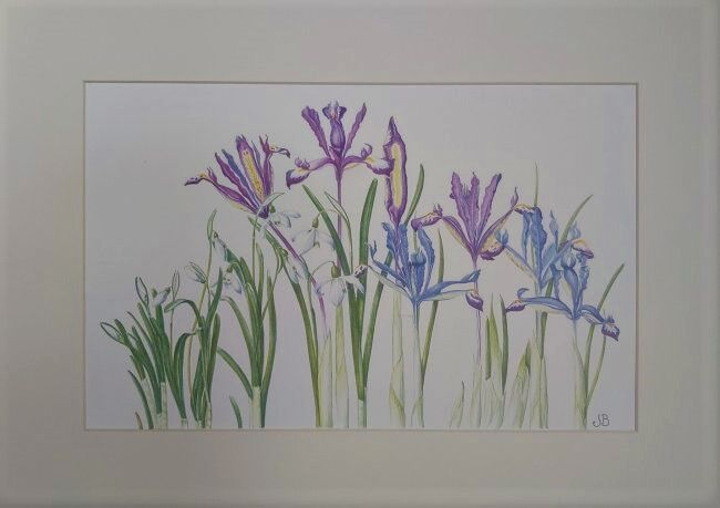 Snow Drops & Irises - SOLD