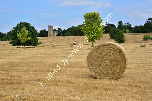 Harvest at Crombe Court