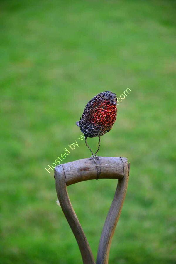 Wire Robin
