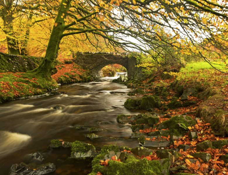 Autumn colour at Robber's Bridge
