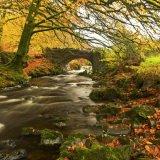 Autumn colour at Robber's Bridge