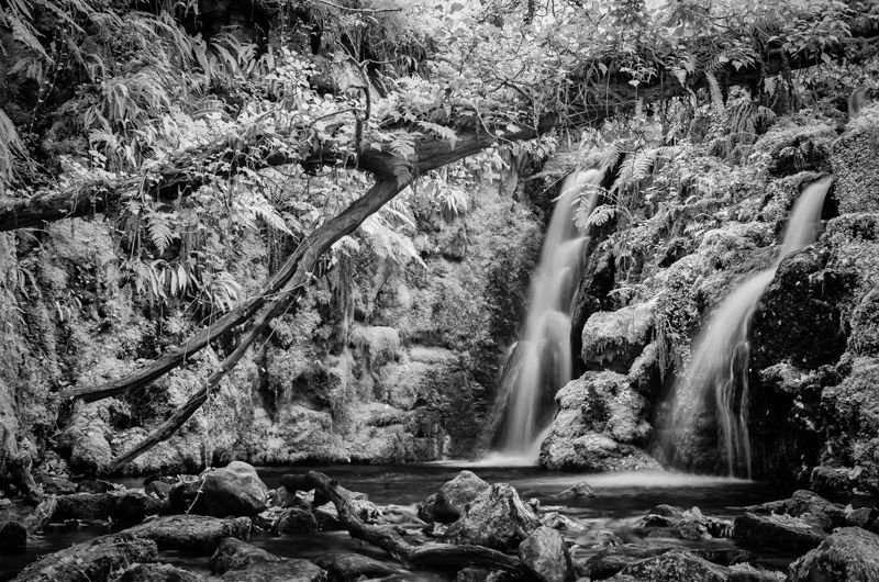 Twin falls in infrared