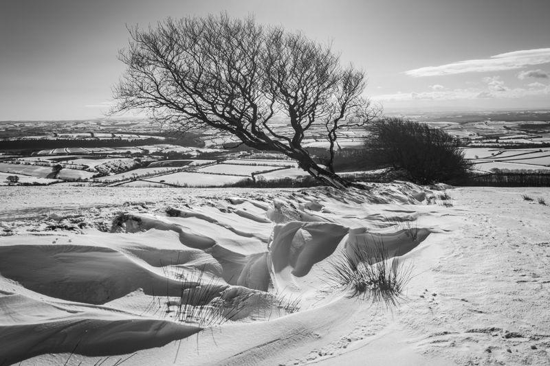 Winter on Exmoor