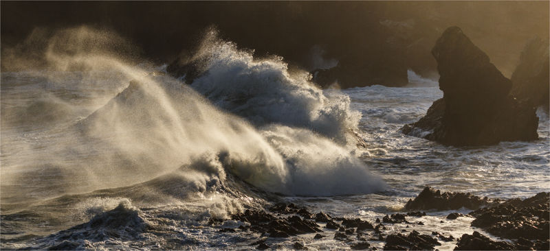 Backlit waves