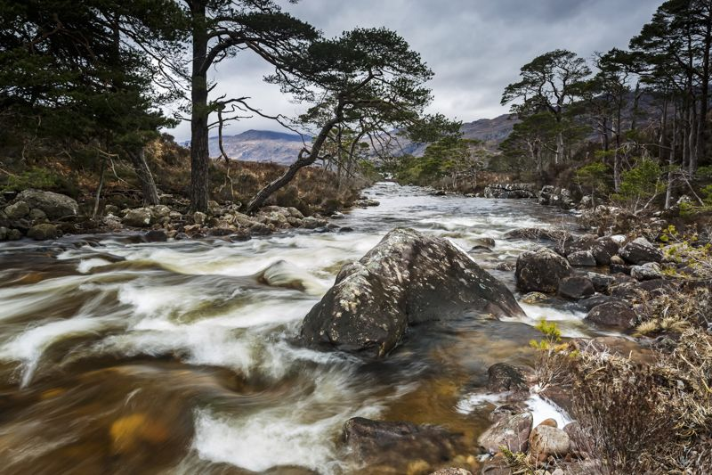 Leading to Loch Maree