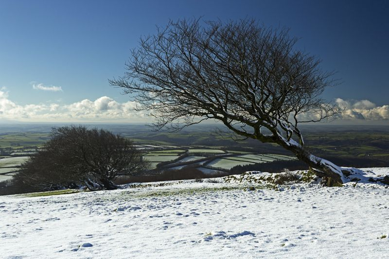 Snow on Exmoor
