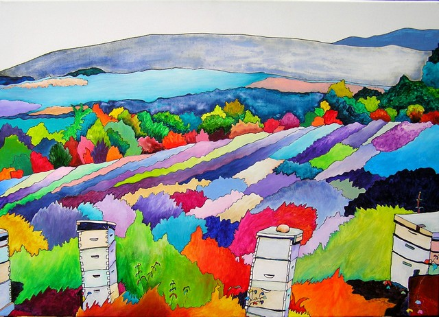 *Beehives in the lavender fields of Provence