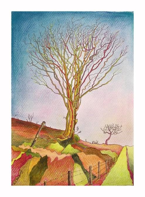 *Exmoor Tree revisited