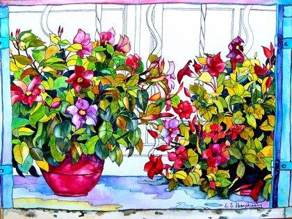 Lucien's Flowers